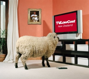 sheepwatchingtv_1